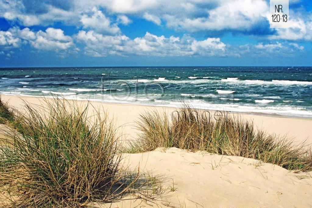 dünen strand und meer  das ist sylt  foto mager
